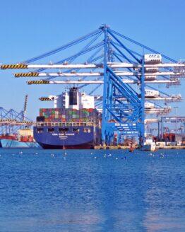 Addetto alla tutela dei beni nell'ambito portuale